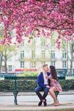 Couples romantiques à Paris une journée de printemps Photographie stock