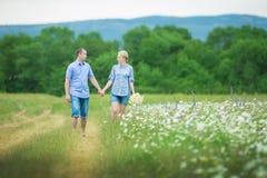 Couples romantiques étreignant et respirant l'air frais dans un domaine chaud avec les fleurs daizy image libre de droits