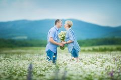 Couples romantiques étreignant et respirant l'air frais dans un domaine chaud avec les fleurs daizy images stock