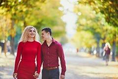 Couples romantiques dans l'amour image stock