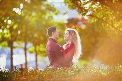 Couples romantiques dans l'amour pr?s de Tour Eiffel photo stock