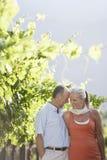 Couples romantiques dans le vignoble Image libre de droits