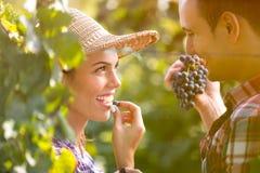 Couples romantiques dans le vignoble Photo libre de droits