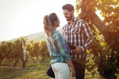 Couples romantiques dans le vignoble avant la moisson Image libre de droits