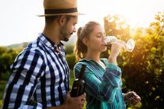 Couples romantiques dans le vignoble avant la moisson Photographie stock libre de droits