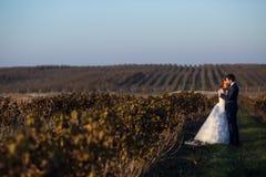 Couples romantiques de conte de fées d'étreindre de nouveaux mariés Image stock