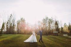 Couples romantiques de mariage dehors Jeunes mariés marchant sur l'herbe verte Le soleil lumineux au fond Photo libre de droits