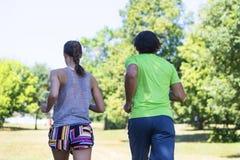 Couples sains, convenables et folâtres fonctionnant en parc Photo stock