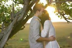 Couples sous l'arbre au jour d'été Photo stock