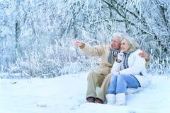 Couples supérieurs à l'hiver dehors Photographie stock libre de droits