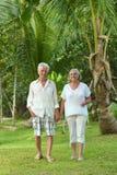 Couples supérieurs à la station de vacances d'hôtel Photos stock