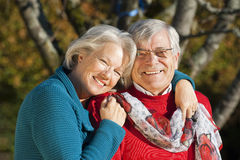 Couples supérieurs Image libre de droits