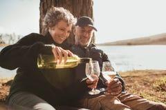Couples supérieurs appréciant des boissons au terrain de camping près du lac Photo libre de droits
