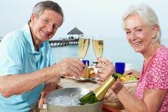 Couples supérieurs appréciant le repas dans le restaurant de bord de mer Image libre de droits