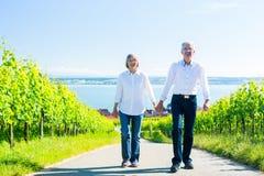 Couples supérieurs ayant la promenade dans le vignoble Photos libres de droits
