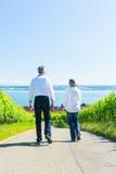 Couples supérieurs ayant la promenade dans le vignoble Photos stock