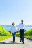 Couples supérieurs ayant la promenade dans le vignoble photo libre de droits