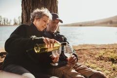 Couples supérieurs ayant plaisir à camper dehors près d'un lac Photos stock