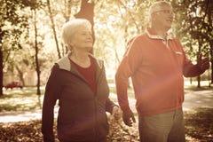 Couples supérieurs dans l'habillement de sports s'exerçant ensemble en parc photographie stock libre de droits