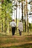 Couples supérieurs dans la forêt d'automne Images libres de droits