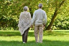 Couples supérieurs dans la forêt d'automne Photographie stock libre de droits