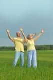Couples supérieurs dans le domaine d'été Images stock