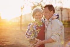 Couples supérieurs dans leur jardin Photo libre de droits
