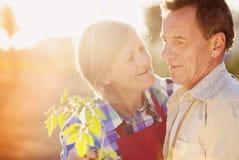 Couples supérieurs dans leur jardin Photographie stock