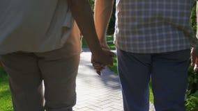 Couples supérieurs de plan rapproché tenant des mains pendant une promenade banque de vidéos