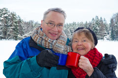 Couples supérieurs de sourire à l'extérieur dans l'horizontal hivernal Photos libres de droits