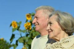 Couples supérieurs en été Images libres de droits