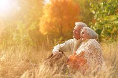 Couples supérieurs en parc automnal Photos libres de droits