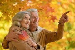 Couples supérieurs en parc automnal Photo stock