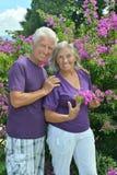 Couples supérieurs en parc d'été Photographie stock libre de droits