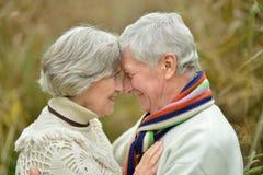 Couples supérieurs en parc d'automne Image libre de droits