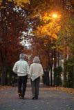 Couples supérieurs en parc d'automne Images libres de droits