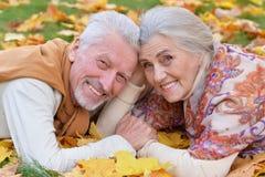 Couples supérieurs en parc d'automne Images stock