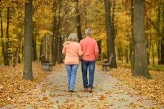 Couples supérieurs en parc d'automne Image stock