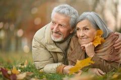 Couples supérieurs en parc d'automne Photographie stock
