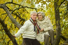 Couples supérieurs en stationnement Photographie stock libre de droits