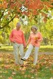 Couples supérieurs en stationnement Image stock