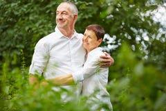 Couples supérieurs ensemble en nature en été Photo stock