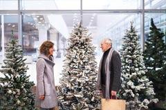 Couples supérieurs faisant des achats de Noël Photographie stock