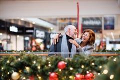 Couples supérieurs faisant des achats de Noël Image libre de droits