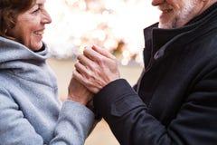 Couples supérieurs faisant des achats de Noël Photos libres de droits