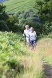 Couples supérieurs faisant un tour en montagnes Photos libres de droits