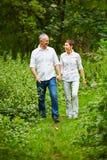Couples supérieurs faisant un tour en nature Photos stock