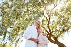 Couples supérieurs heureux étreignant au parc d'été Photo stock