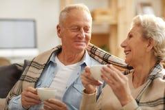 Couples supérieurs heureux appréciant le thé photo libre de droits