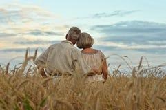 Couples supérieurs heureux en été Image libre de droits